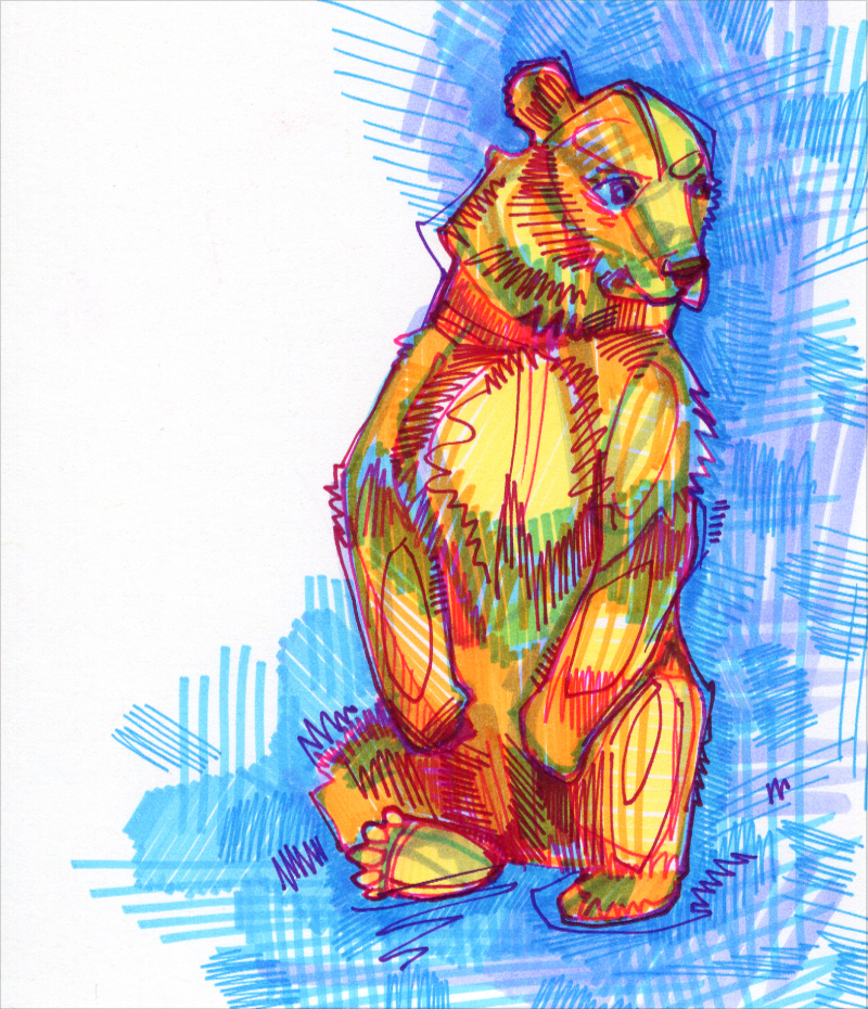 bear colorful drawing