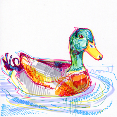 duck drawing in marker on paper