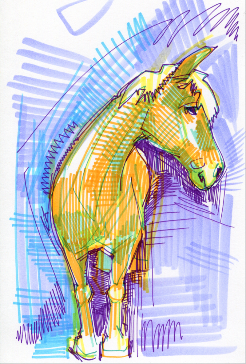 horse colorful drawing