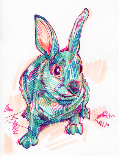 rabbit drawing in marker on paper