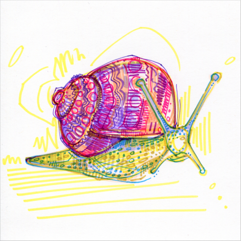snail colorful drawing