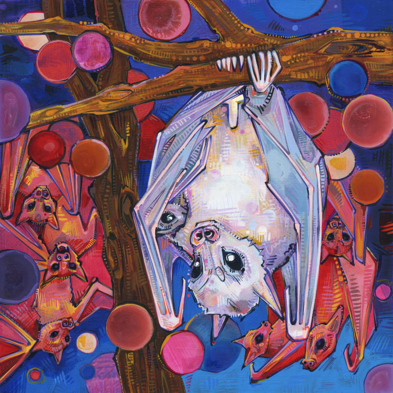 painting of a Dayak fruit bat