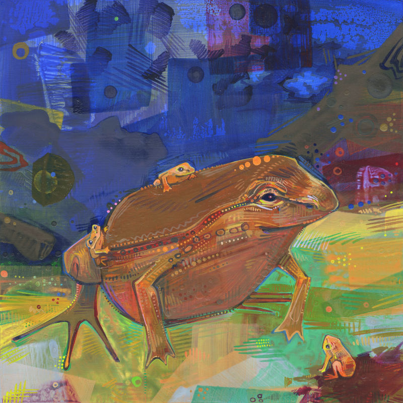 painting of a pouched frog dad with babies
