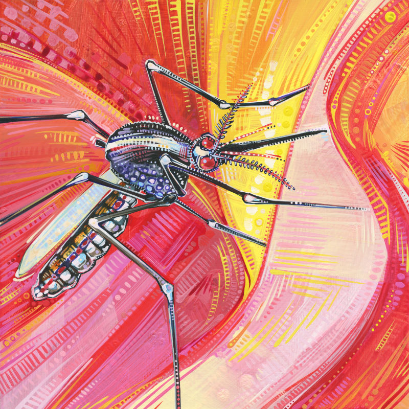 painting of a mosquito