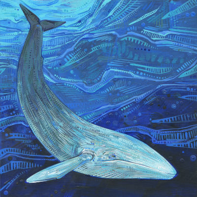 contemporary wildlife art for sale, blue whale painted in acrylic