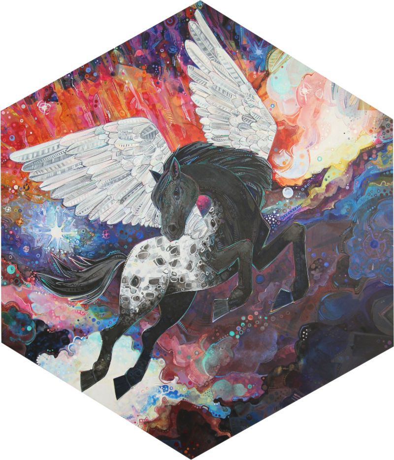 Appaloosa horse Pegasus in space