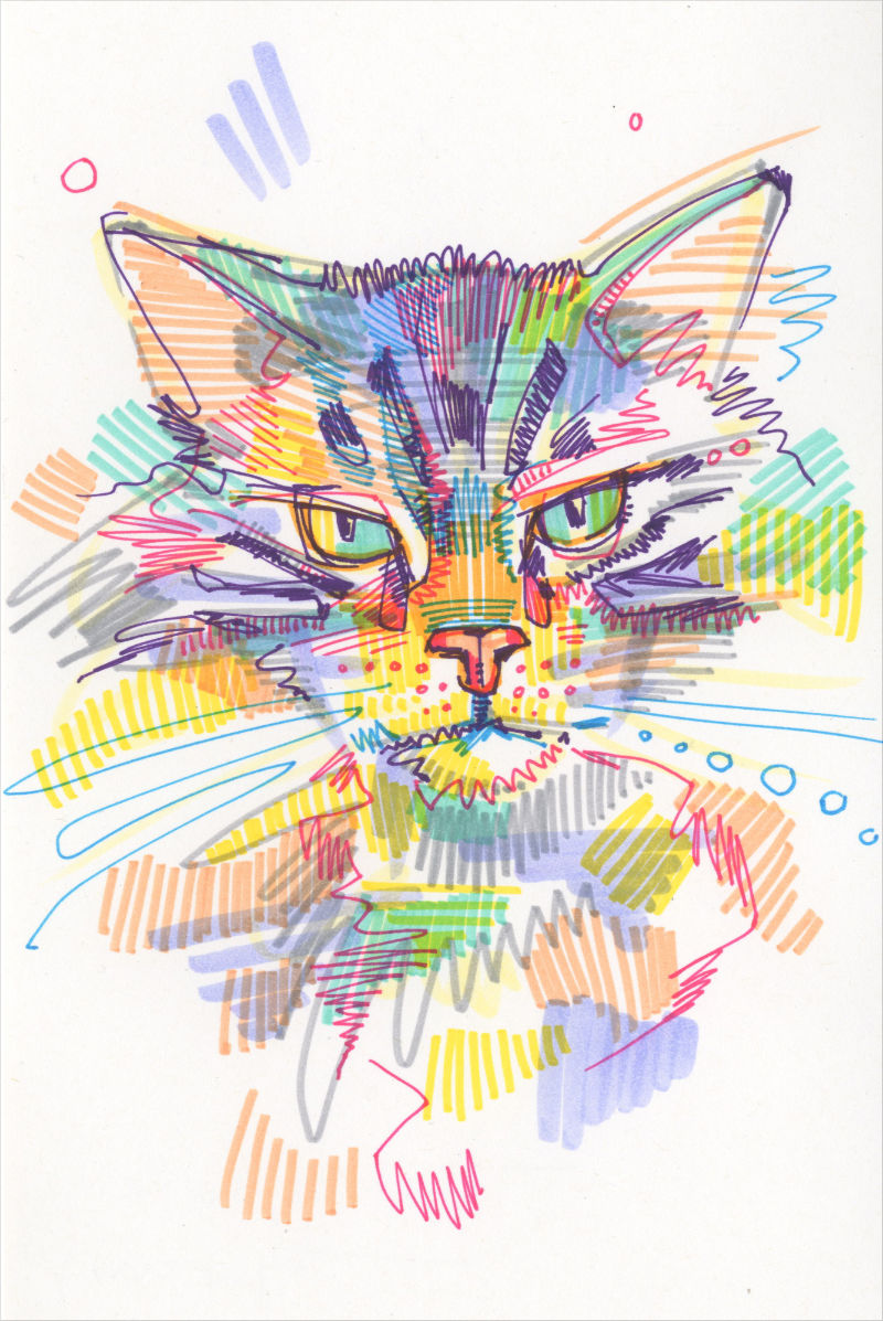 marker on paper cat drawing
