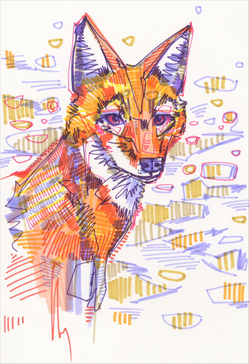 drawing of a simien fox