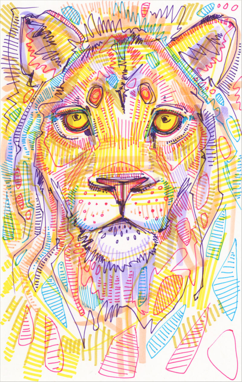 drawing of lion