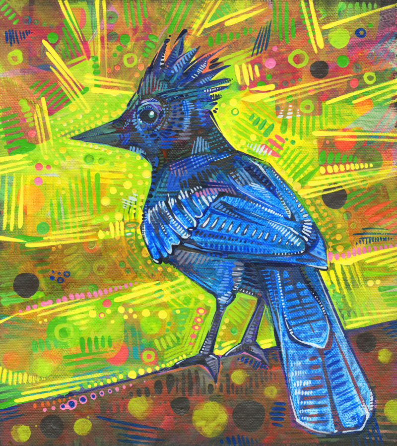 painting of a Steller's jay