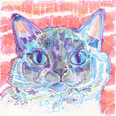 cat drawing in marker on paper