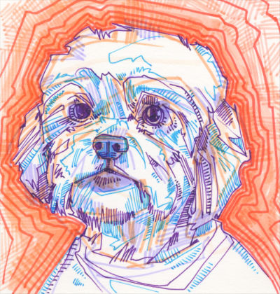 dog portrait drawing by pet artist Gwenn Seemel