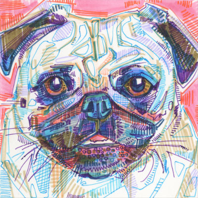 colorful pug portrait drawing