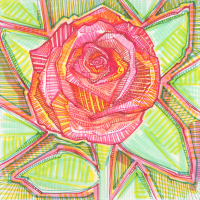 illustration of a rose by flower artist Gwenn Seemel