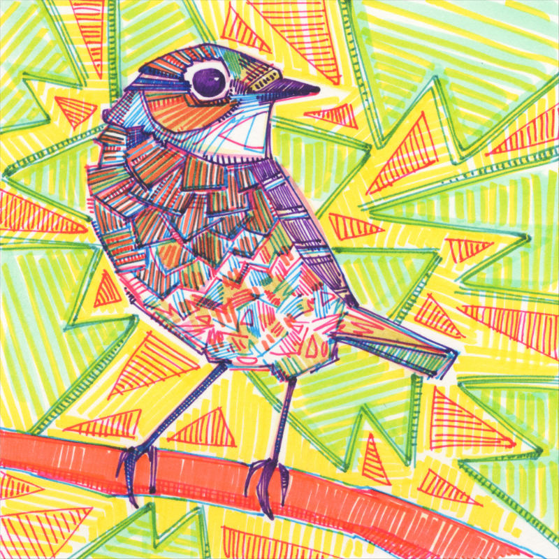 drawing of a sparrow