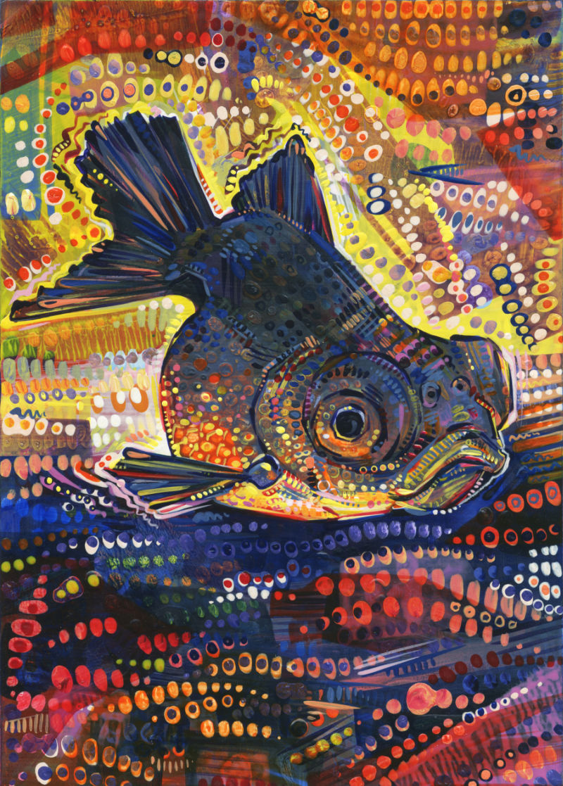 painting of Black Telescope goldfish