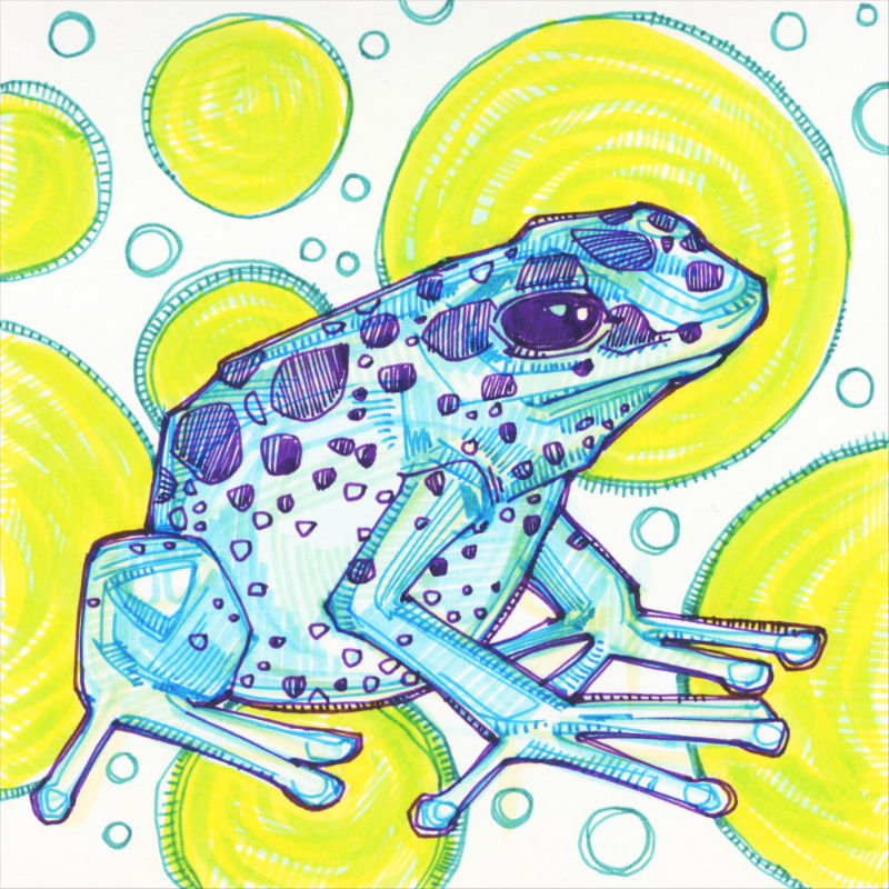 a crosshatched drawing of a blue frog with purply spots, green spots in the background