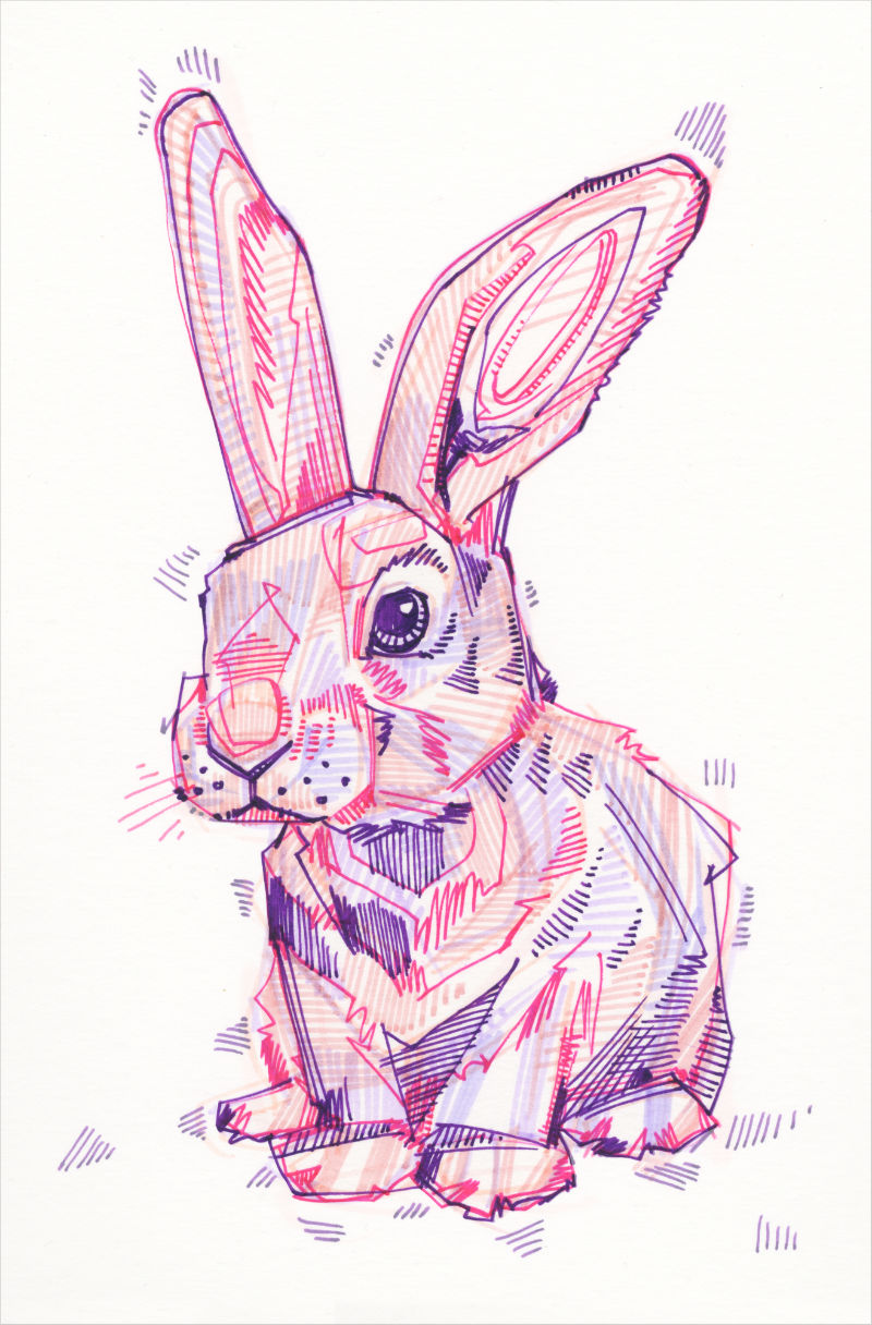 a colorful crosshatched drawing of a bunny
