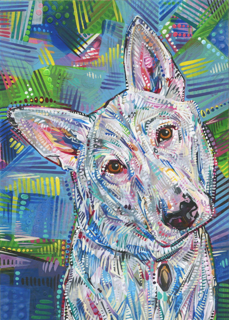 pet portrait, image of a sweet dog face