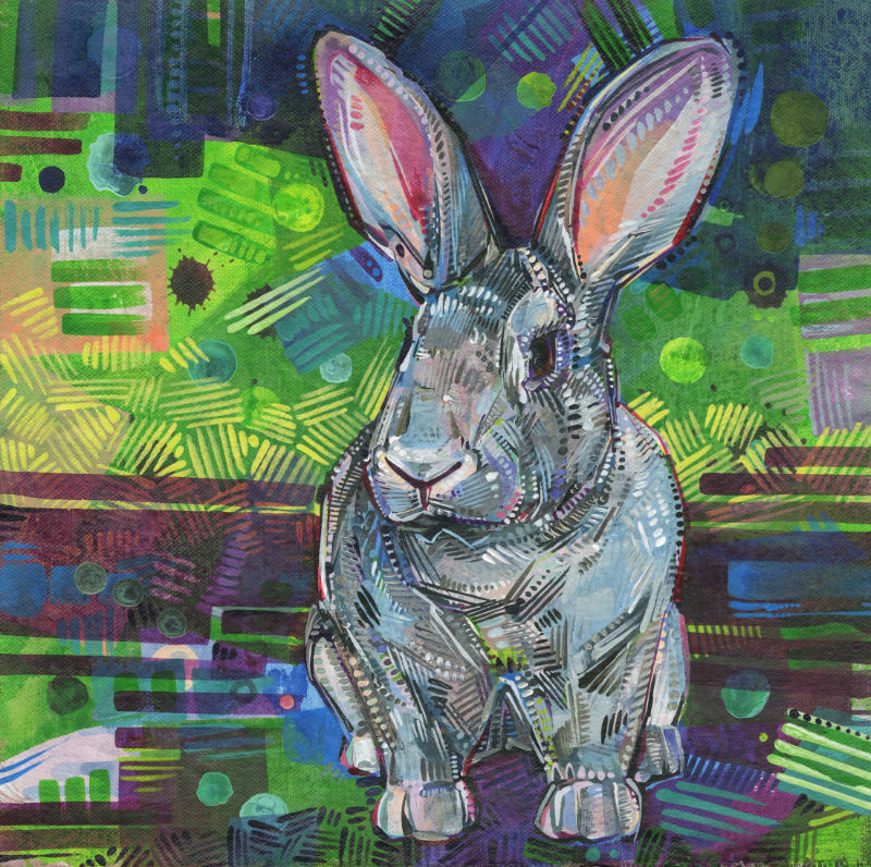 pet portrait of a Giant Chinchilla on a colorful abstract background