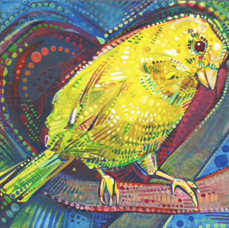a colorful crosshatched painting of a canary sitting on a branch with the shape of a heart behind the bird
