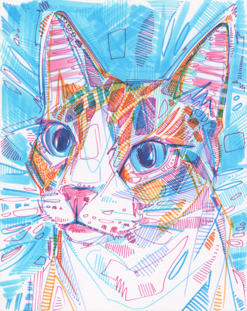 colorful crosshatched portrait drawing of a pet cat