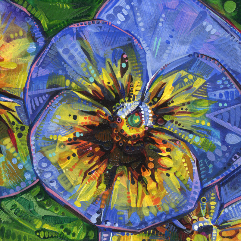 a pansy flower painting