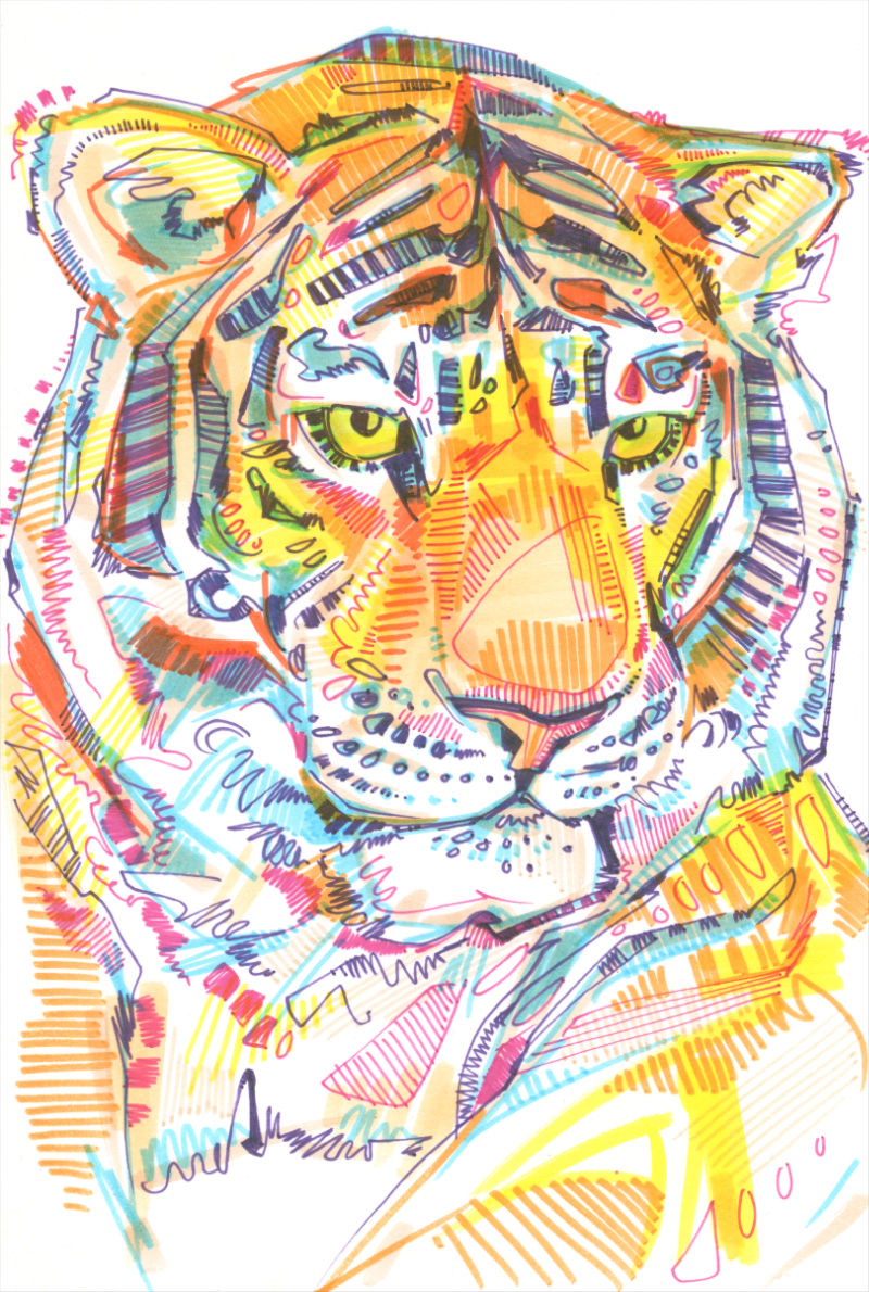 marker on paper tiger art