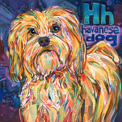 Havanese dog painted in acrylic for sale